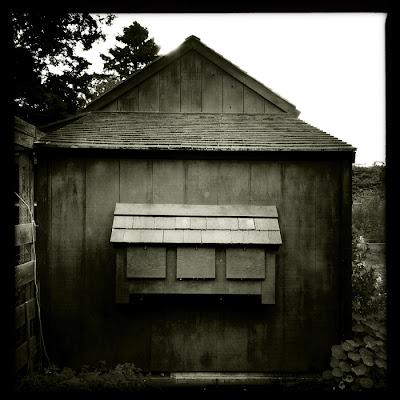 karri allrich black and white photograph