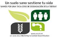 Día Mundial de Lucha contra la Desertificación