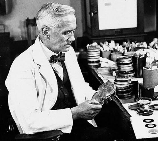 Penicilina Alexander Fleming