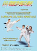 Asociatia Clubul Sportiv Dinamo Victoria anunta organizarea cursurilor de arte martiale .