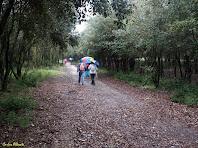 Caminant per la Pineda de Can Màrgens. Autor: Carlos Albacete