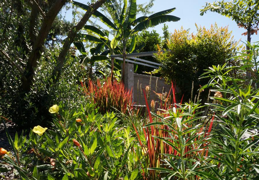 Zeichnen in der landschaft august 2012 - Garten zeichnen ...