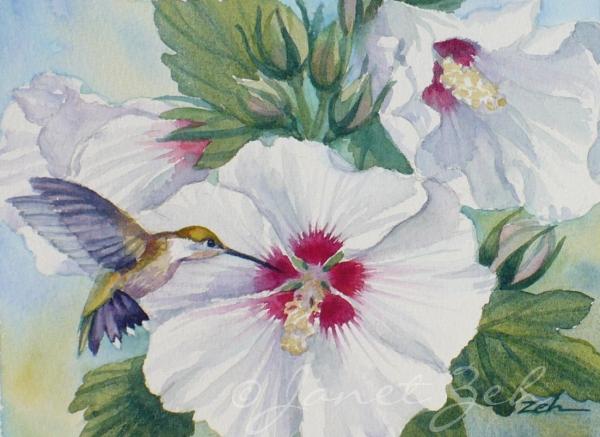 Zeh Original Art Blog Watercolor and Oil Paintings: Ruby ...