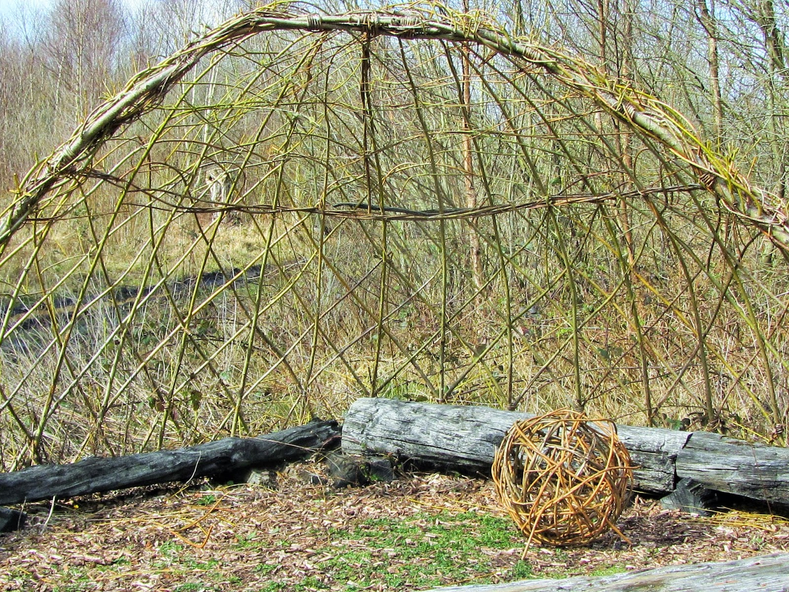 Willow Arch Lough Boora