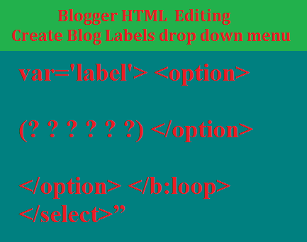 HTML Editing-How to Create a Drop Down Menu for Your Labels