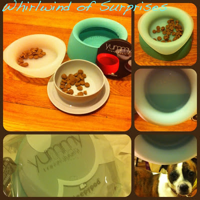 Sleepypod yummy travel bowls review