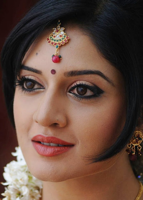 vimalaraman saree hq nowatermark cute stills