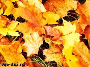 Осенние каникулы 2014 когда начинаются