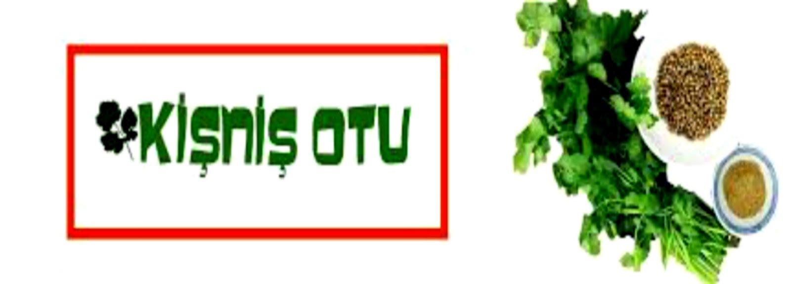 Kişniş Otu- Kolay-  Lezzetli- Nefis- Videolu- Tarifler