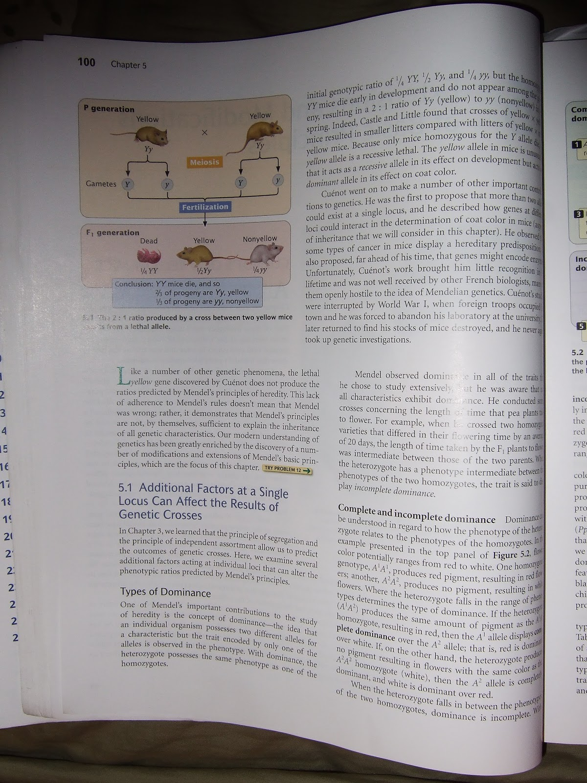 ebook história da frança tomo ii