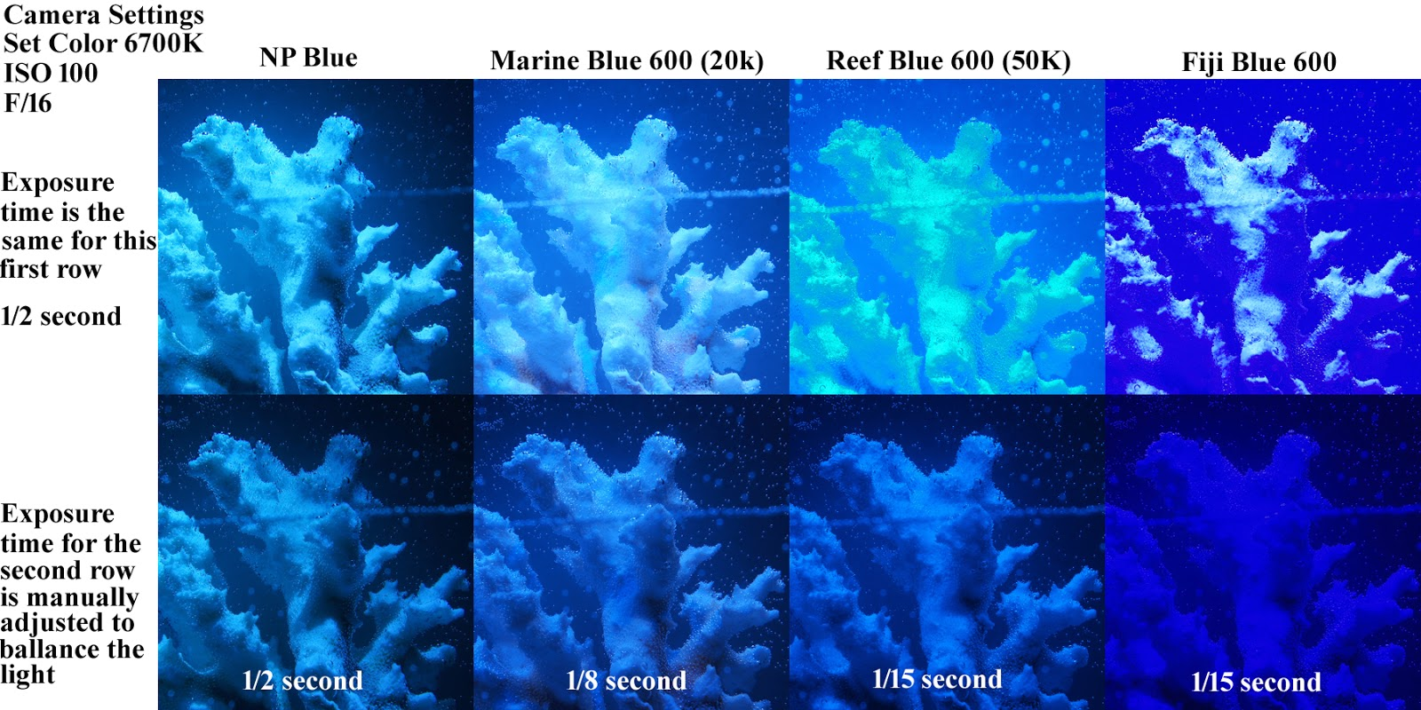 Blue Reef Aquarium LED Light Color Comparison  sc 1 st  Aquarium/Pond Answers : led reef tank lighting - azcodes.com
