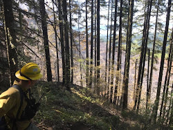 Southern Oregon firefighters start 2017 season