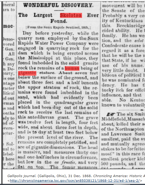 1868.12.31 - Gallipolis Journal