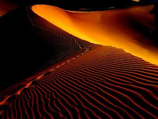 Desierto, ecología, cactus, sol, clima, geografía, agua, sequía, nubes