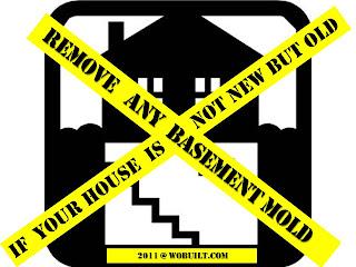 Basement renovation tips, by wobuilt.com