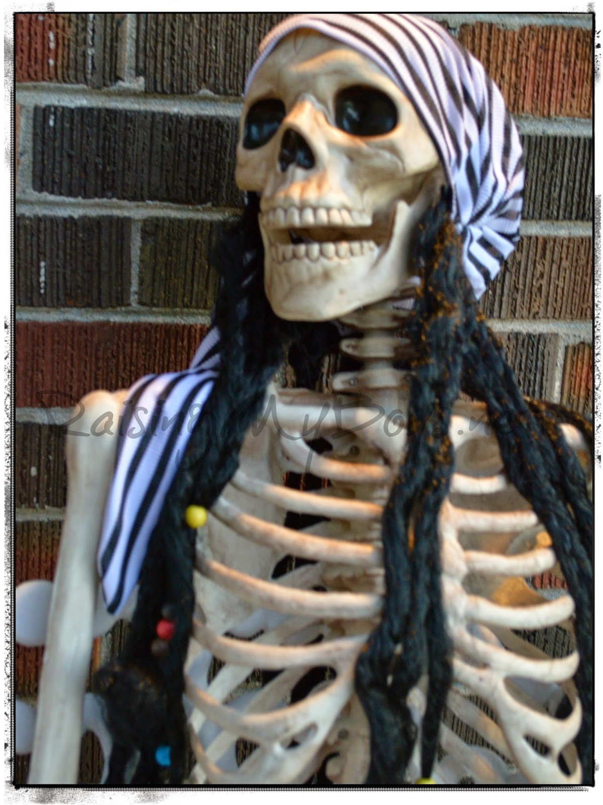 skeleton in pirate bandana Halloween