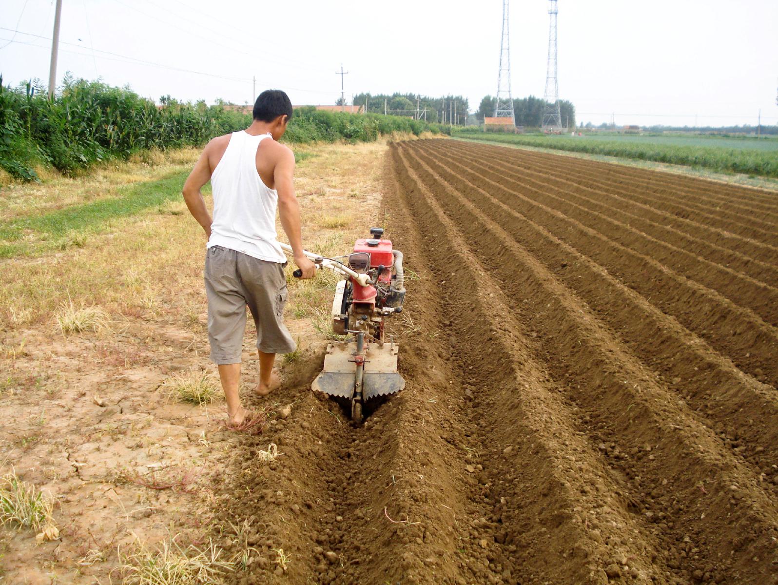 Продажа сельхоз земли в деревне своими руками