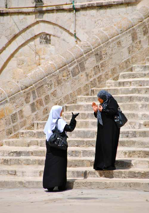 mount sterling single muslim girls Faith focused dating and relationships browse profiles & photos of kentucky mount sterling catholic women and join catholicmatchcom, the clear leader in online dating for catholics with.