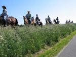 Se marsken fra hesteryg: