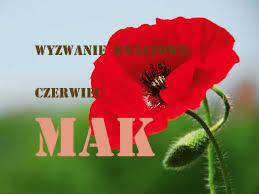 http://kreatywnybazarek.blogspot.com/2015/06/czerwcowe-wyzwanie-kwiatowe.html
