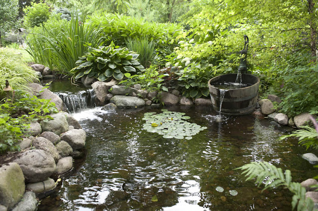 Aquascape your landscape designing your dream pond for Koi pond shade ideas