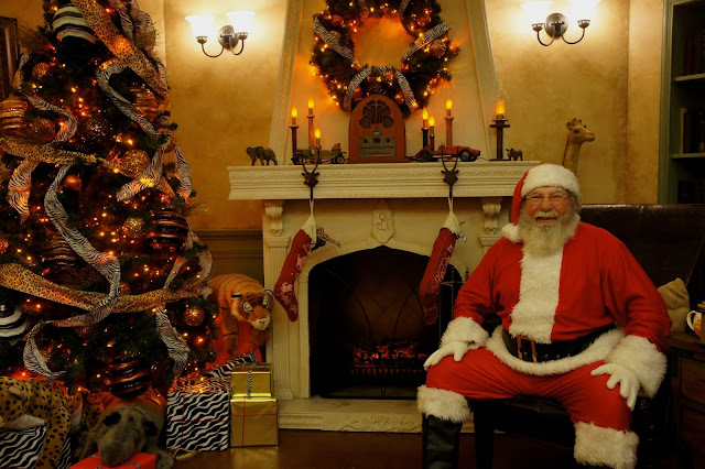 Santa Pictures at the San Antonio Zoo, Zoo Lights, Holiday Nights