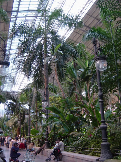 Atocha Railway Station - Palms