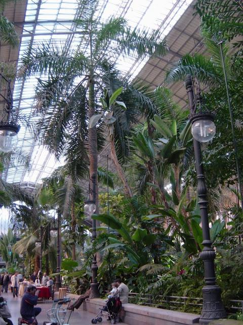 Atocha Railway Station - Palms