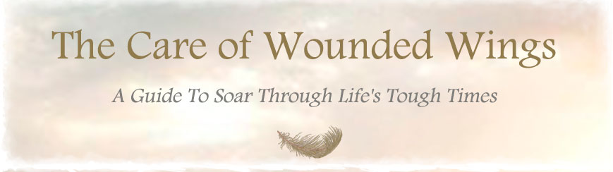 The Care of Wounded Wings