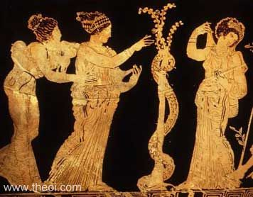 Essence Garden Of The Hesperides A Brief History Of Citrus