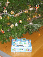 Presents under the Christmas tree - maybe they are games?!
