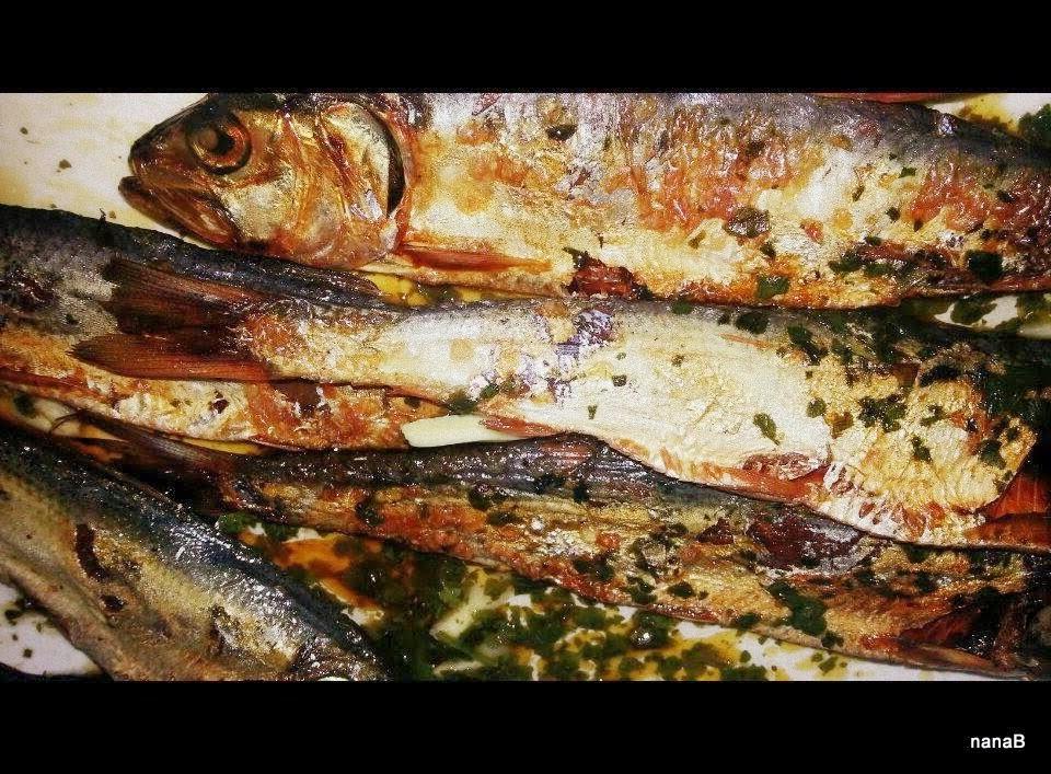 sardine essiccate