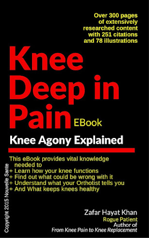 Knee Deep in Pain EBook