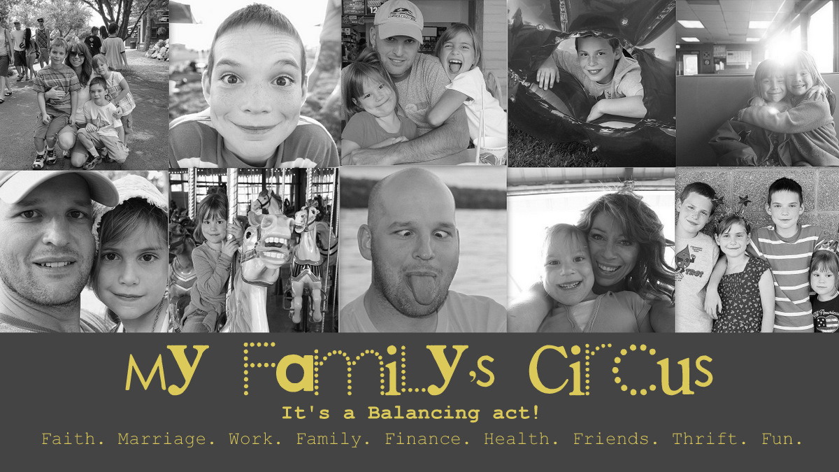MY FAMILY&#39;S CIRCUS- The balancing act