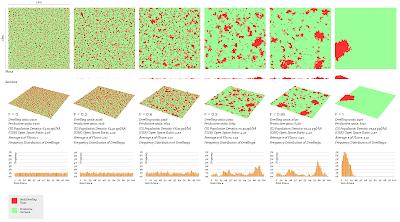 Settlement Simulation Observations