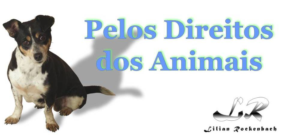 :::PELOS DIREITOS DOS ANIMAIS:::