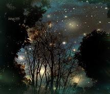 Night-Sky-Reflections