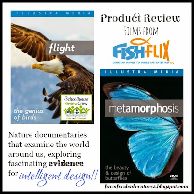 Product Review: Flight and Metamorphosis by FishFlix.com