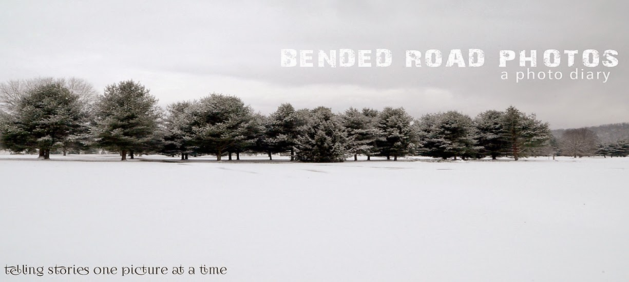 Bended Road Photography