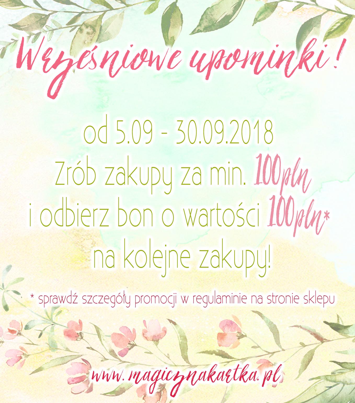 ZRÓB ZAKUPY I ODBIERZ BON O WARTOŚCI 100Zł !