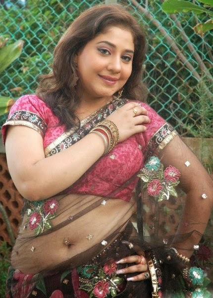 Mallu Aunty Hot Navel Show In Saree Meenakshi Kailash Hot Navel Show ...