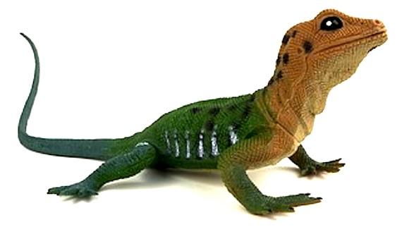 lizard, plastic
