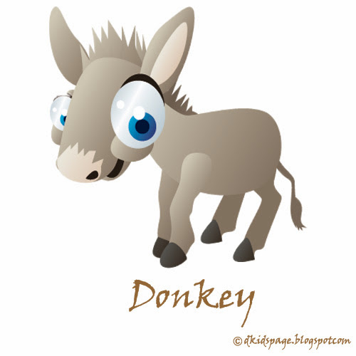 Kids Facts About Donkeys