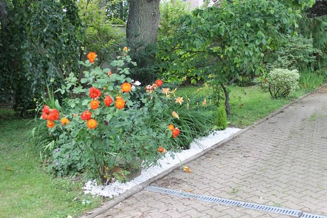 Le jardin du clos des vignes petite all e de graviers blanc - Jardin du clos des blancs manteaux ...
