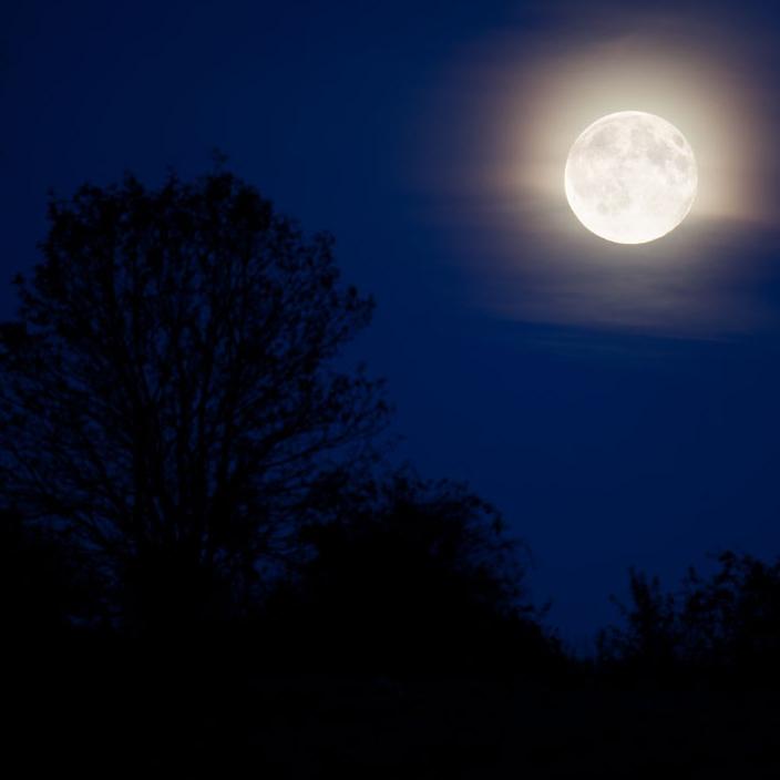 http://1.bp.blogspot.com/-14iprZLc4tI/T3U40GleKrI/AAAAAAAAAVc/W2jAE9S-Tw4/s1600/moonlight-landscape-11287160000RlIy-public+domain+pictures.net.jpg