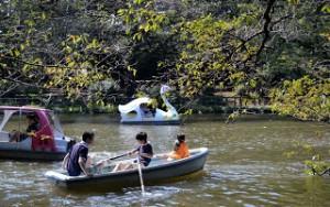 Misteri Kutukan Taman Di Jepang