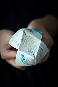 Cootie Catcher