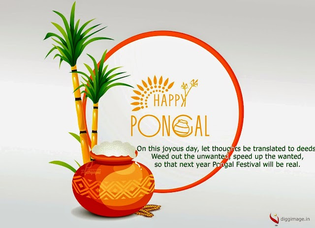 Weed out the unwanted, speed up the wanted, so that next year Pongal Festival will be real.