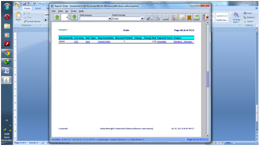 Report Sales order4
