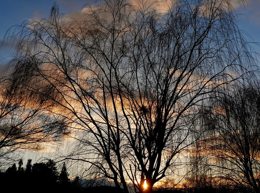 http://stardustenglishwriting.blogspot.jp/2015/01/evening-winter-scape-in-nara-park.html